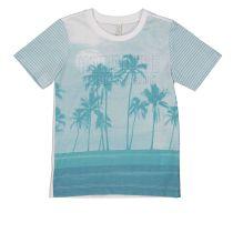 Pamučna majica za dječake picture